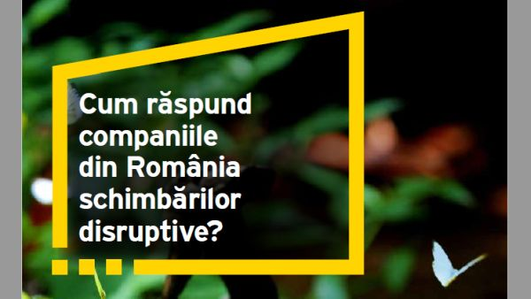 EY Study: Only 48% of the Romanian companies have an agenda of the disruptive change of the organization