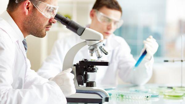 Piata serviciilor stomatologice creste prin educatie si inovare