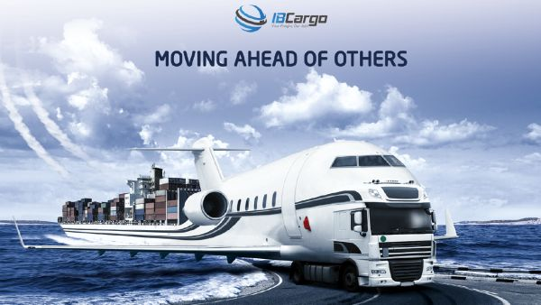IB Cargo, big enough to have all logistical solutions and small enough to care