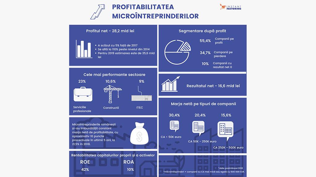 Companiile cu cifra de afaceri sub 50.000 euro au fost cele mai profitabile microintreprinderi în 2018