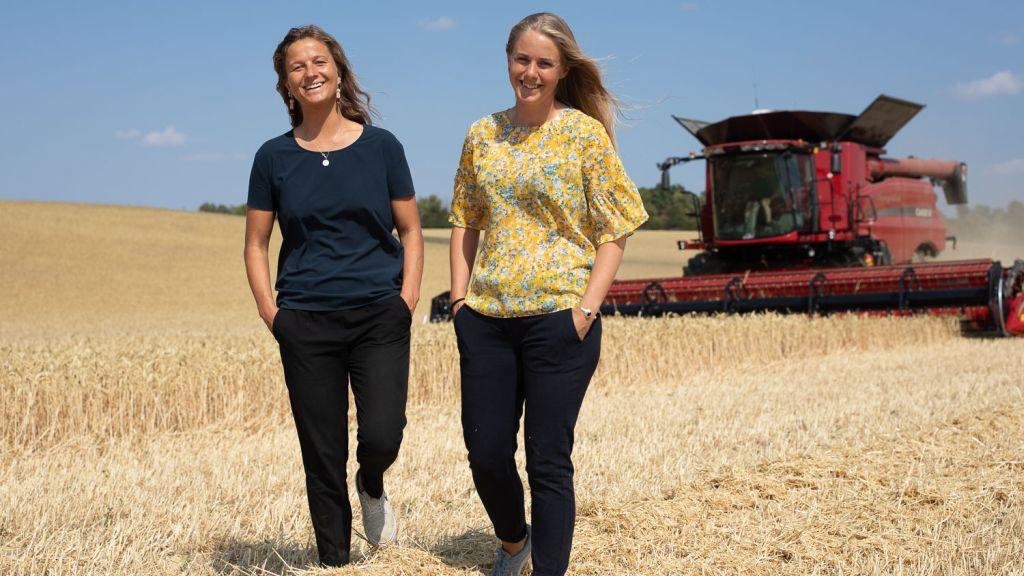 Platforma Commoditrader si Asociatia Producatorilor de Porumb din Romania (APPR) incheie un parteneriat prin care sprijina fermierii