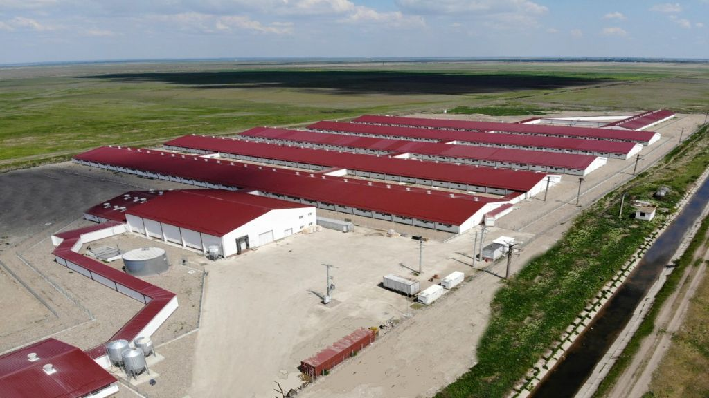 DCH International SA, the founder of Premium Porc Group in Romania, registered a satisfactory profit in 2019, despite the challenges related to the African pork fever