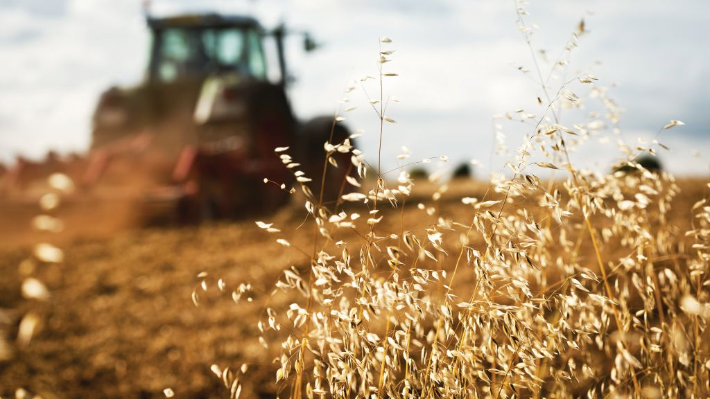 Restrictions imposed on the sale of agricultural land - beneficial effects and side effects