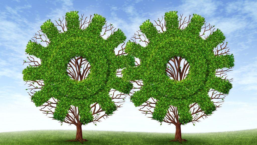 Grupul de firme Vrancart isi consolideaza pozitia pe piata reciclarii deseurilor printr-o investitie green field in valoare de 17 milioane EURO