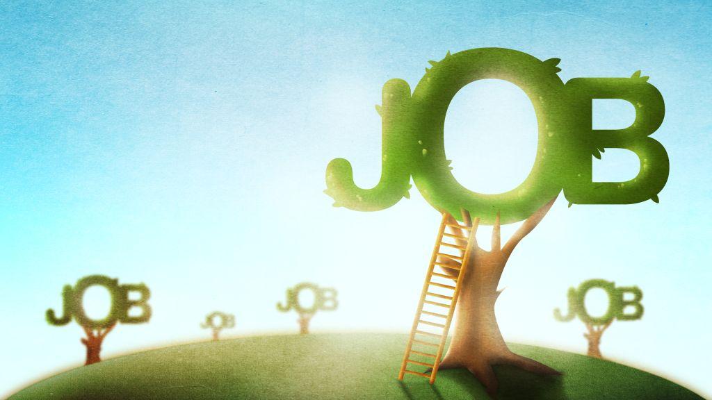 BestJobs: Tinerii la inceput de cariera, tot mai activi in cautarea primului job